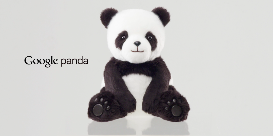 Google Launches Panda in Japan